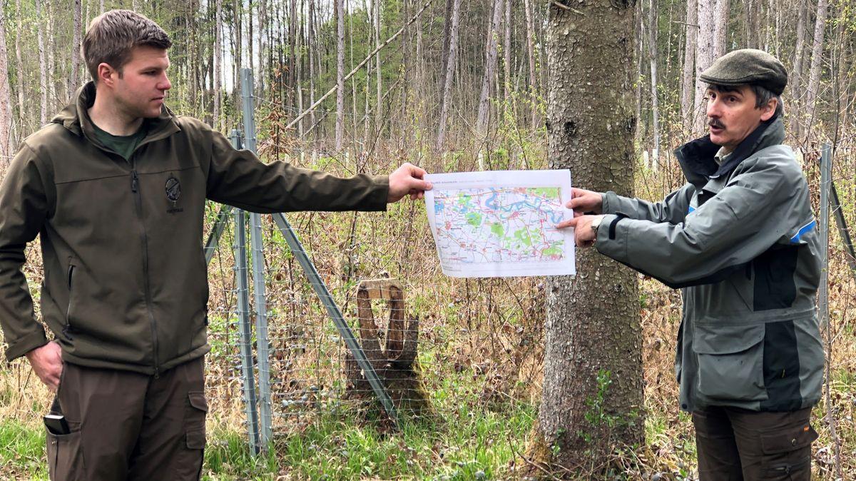 Joshua Gerstenmeier und Michael Roßkopf stellen das Beratungsprojekt für knapp 2.000 Waldbesitzer vor.
