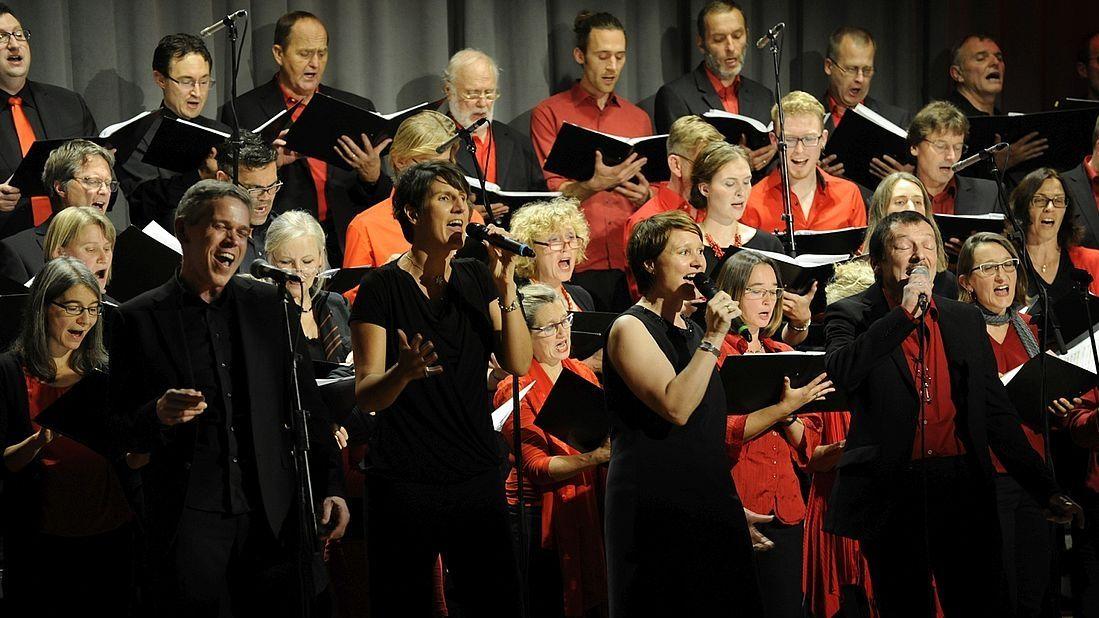 """Der Regensburger """"Heart Chor"""" bei einem Konzert vor Corona."""