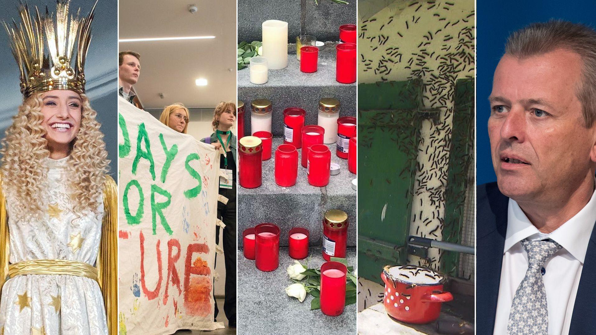 Symbolbild Jahresrückblick Mittelfranken 2019: Christkind Benigna/FFF-Protestierende/Kerzen in Heroldsberg/Raupen an Hauswand/Ulrich Maly