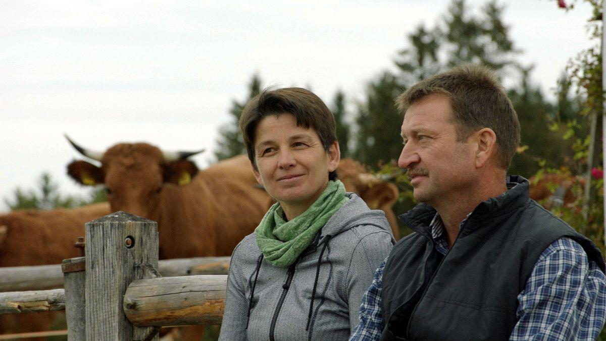 Veronica und Georg Mayr sitzen vor der Weide ihrer Bio-Ochsen.