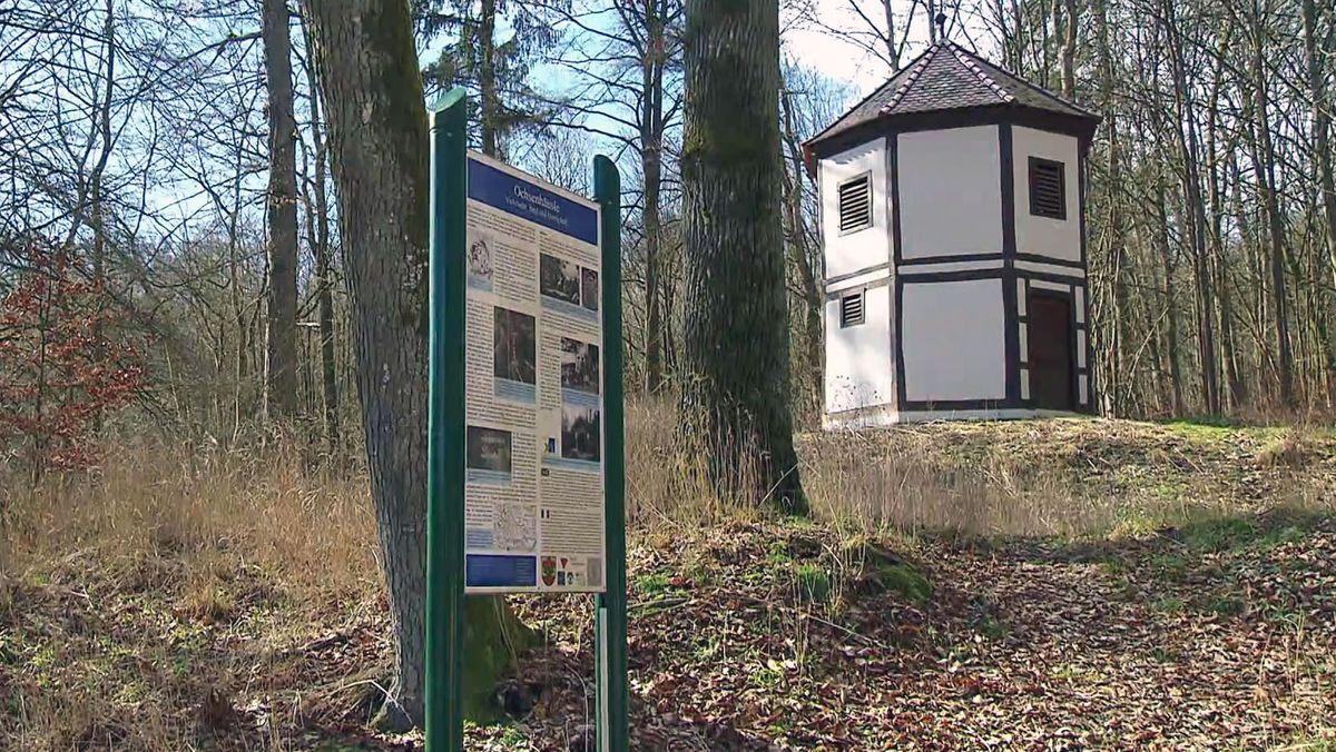 Tafel erinnert im Gramschatzer Wald an Röntgen