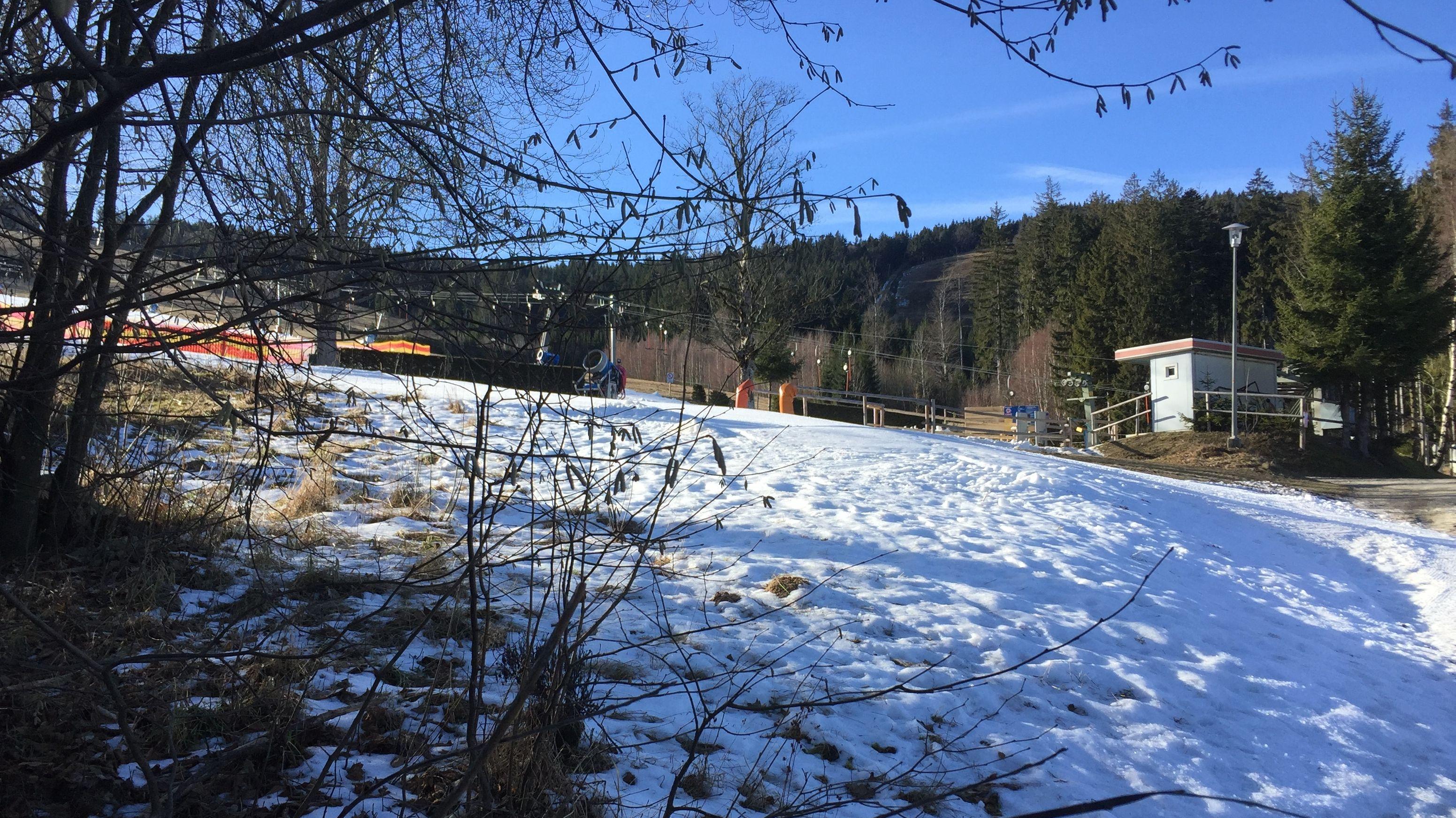 Schneemangel im Bayerischen wald