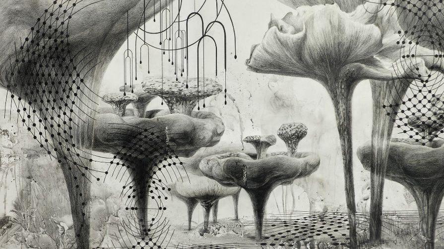 Zeichnung von Pilzen