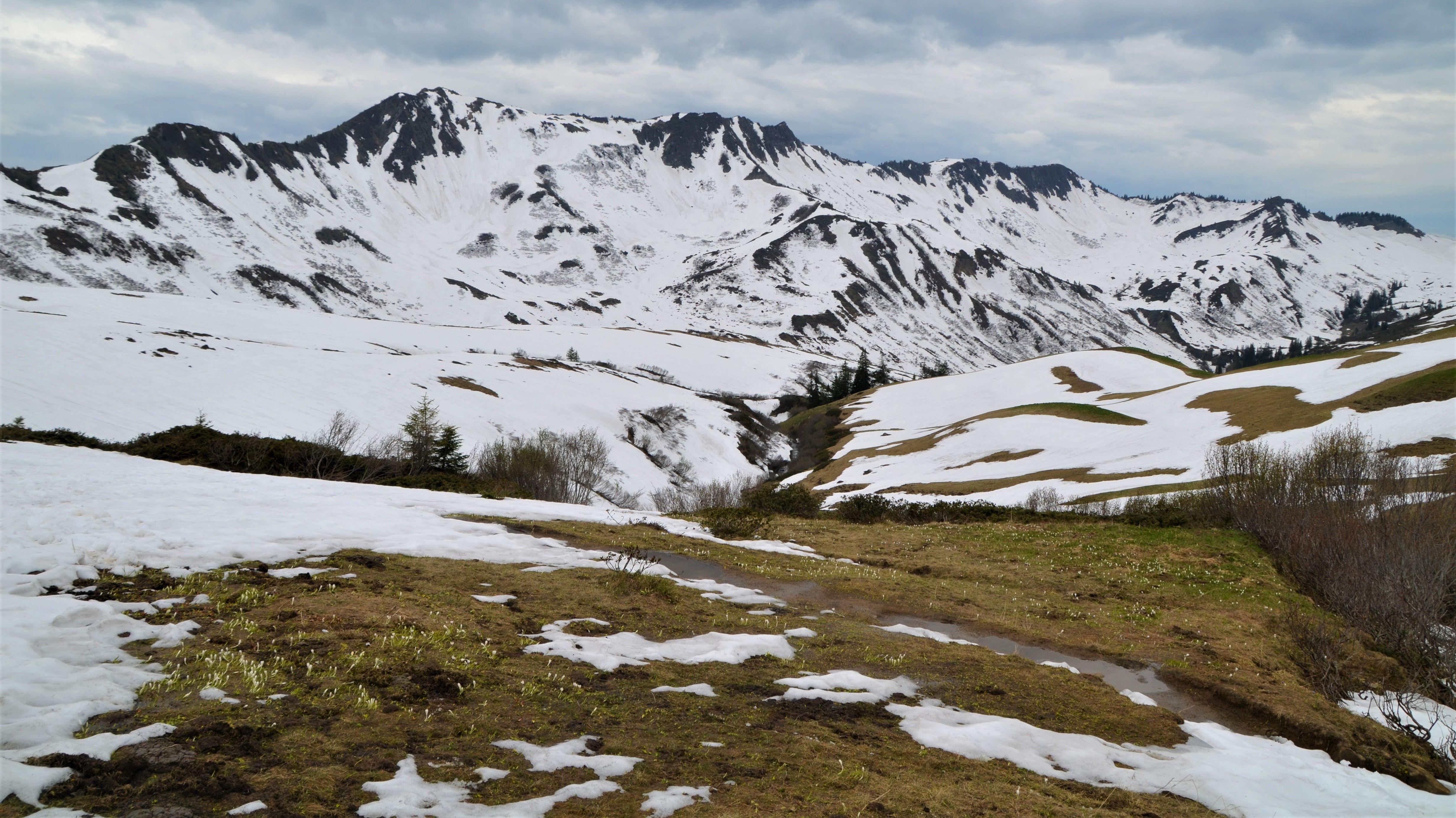 Skilager im Bregenzer Wald: Klimasorgen und Schneemangel stellen Schulen vor die Frage, ob Skilager noch zeitgemäß sind.