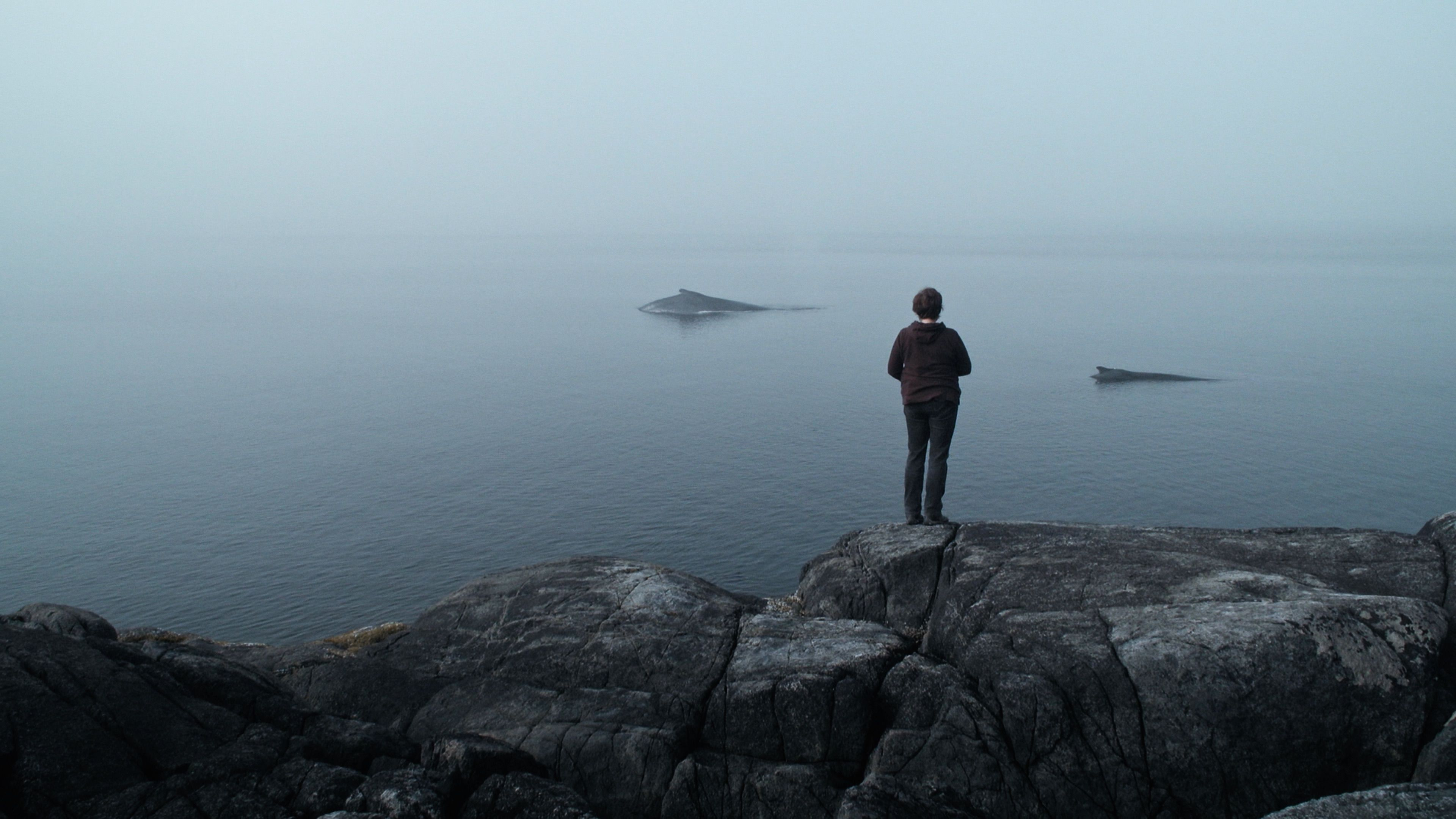 Eine Frau steht auf Felsen vor einem Meer aus dem gerade zwei Wale auftauchen.