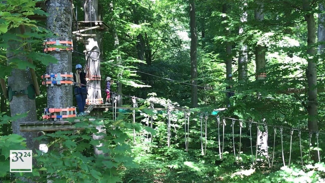 Von Blättern verdeckt, spannt sich der Klettergarten von Baum zu Baum.