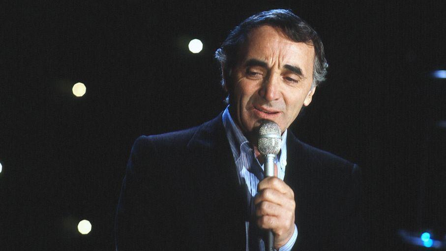 Ein Mann mit Mikrofon in der Hand singt.
