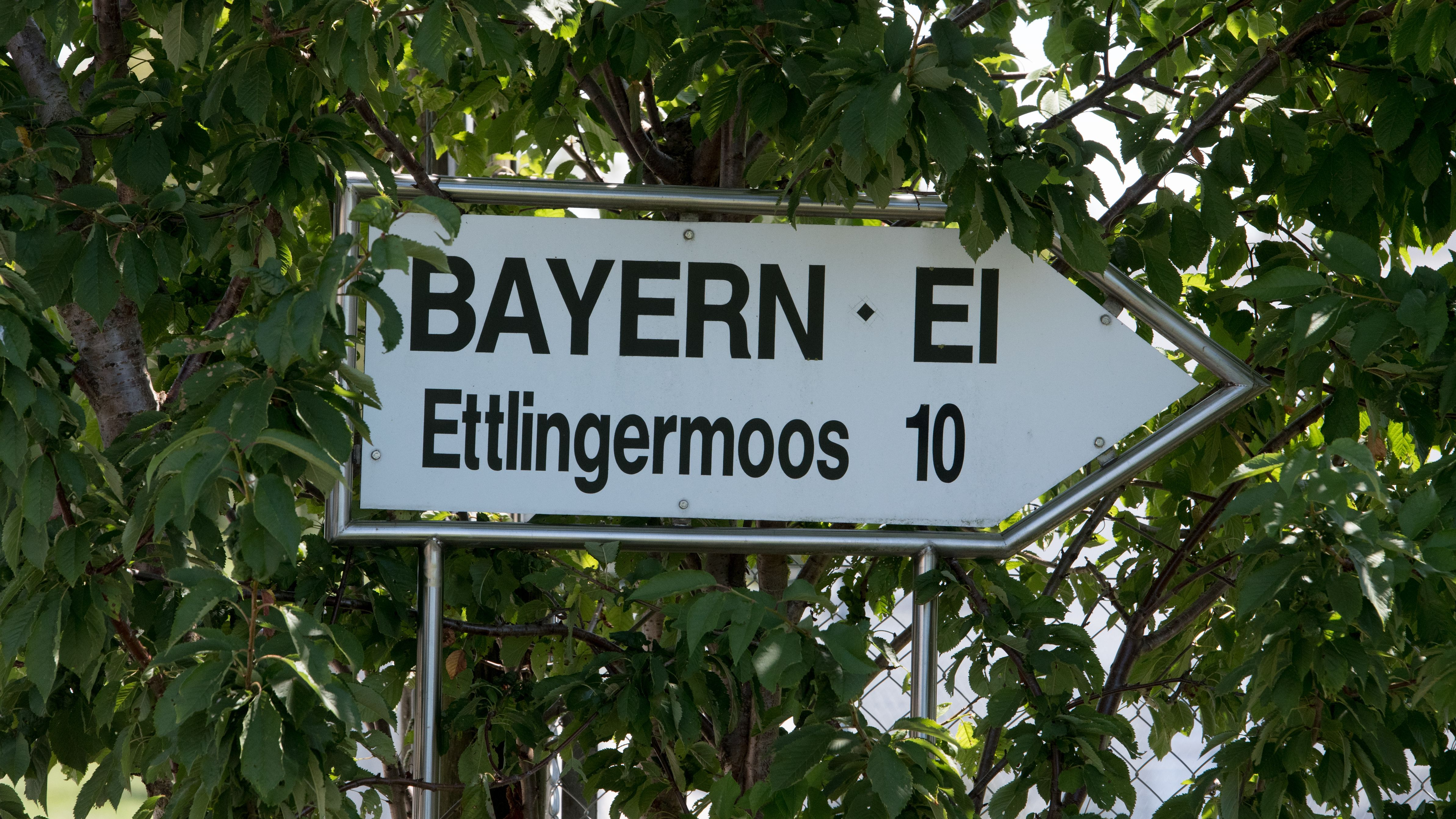 Schild der Firma Bayern-Ei.
