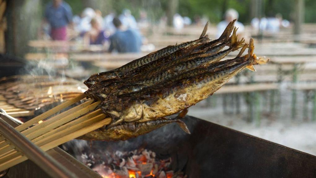 Fisch wird über heißer Kohle gegrillt