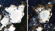Satellitenbilder der Insel Eagle Island im Vergleich. | Bild:Joshua Stevens/NASA