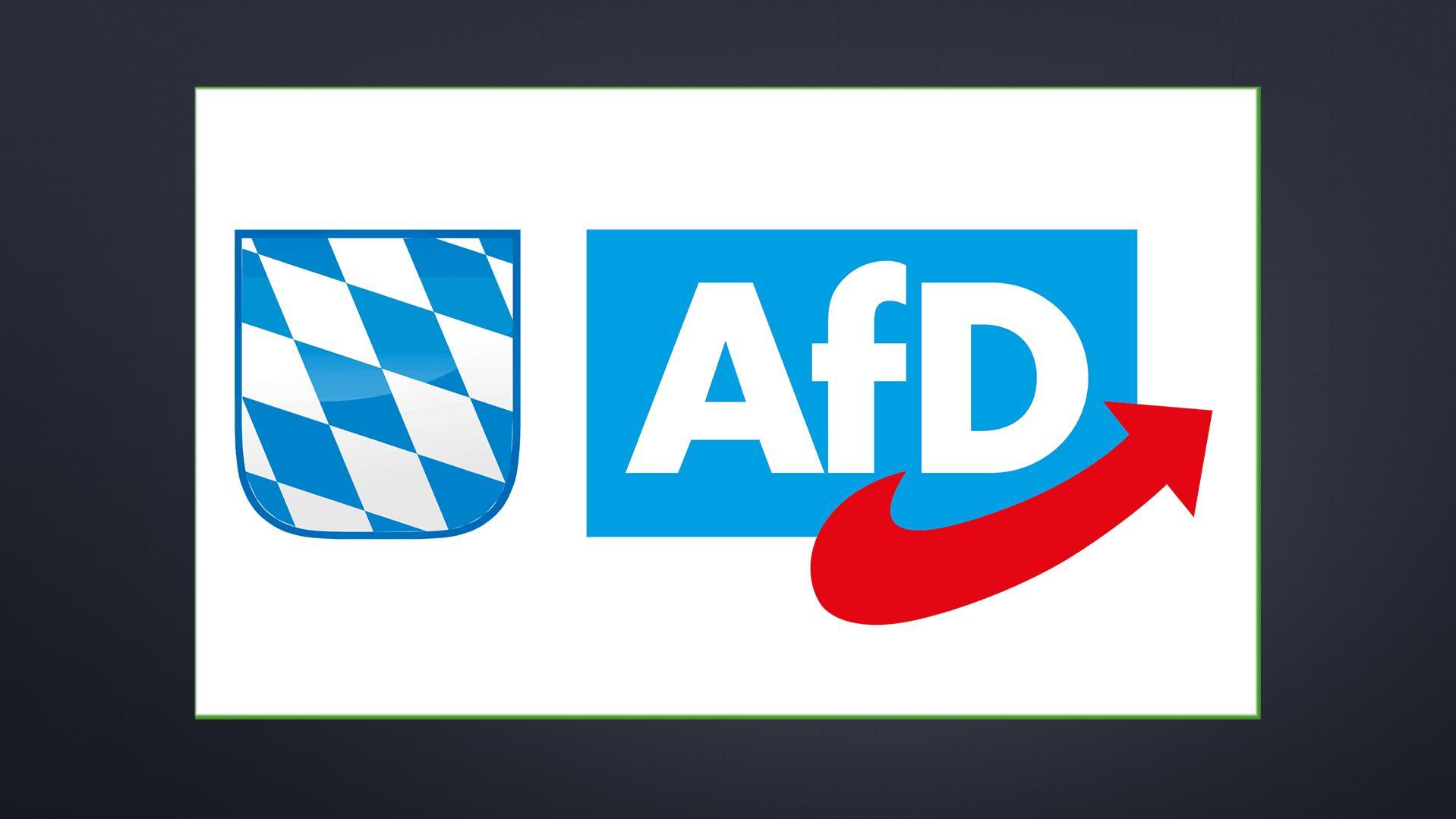 AfD will konservative und politikverdrossene Wähler erreichen