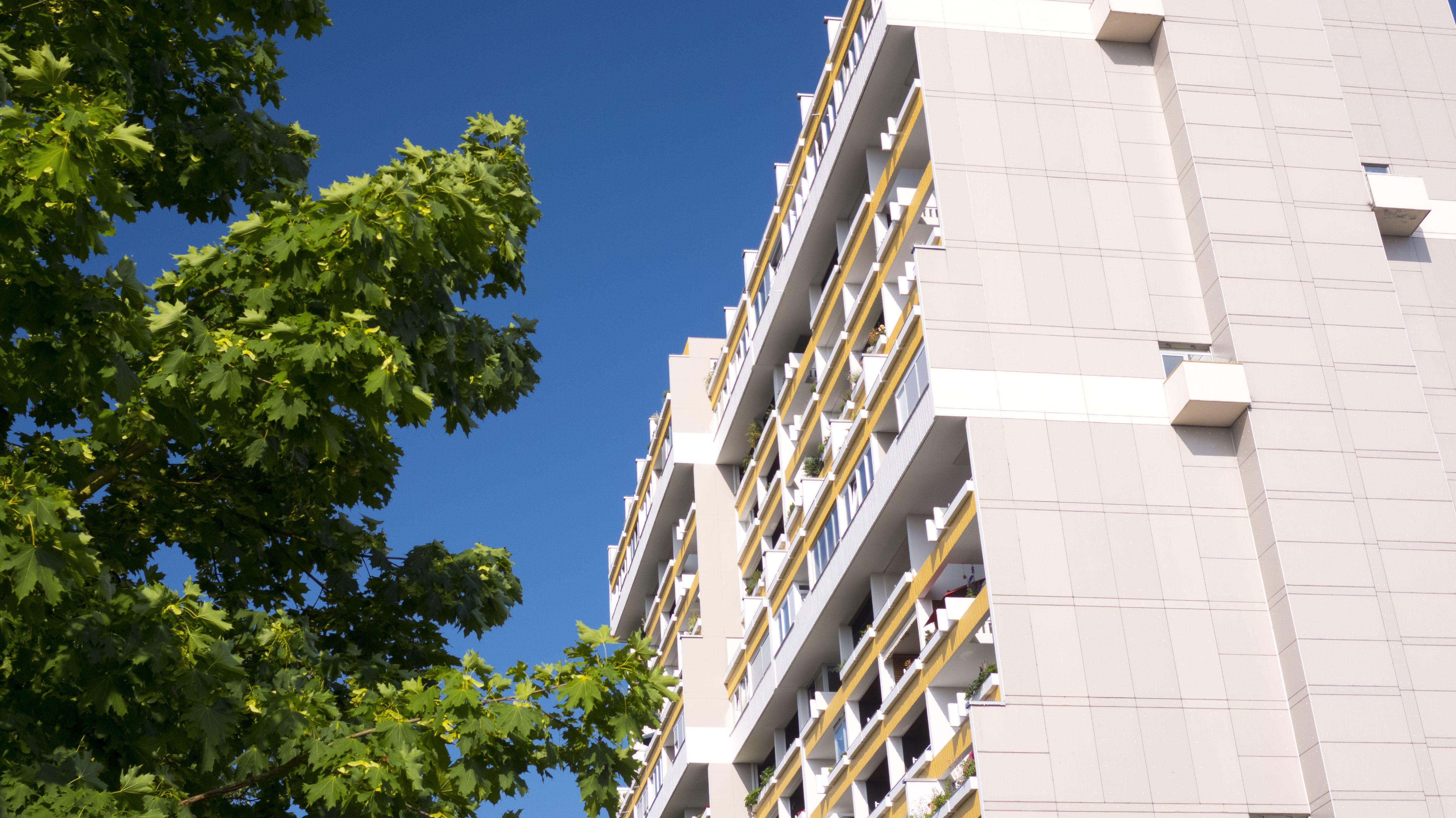 Hochhaus mit Balkonen neben Baum.