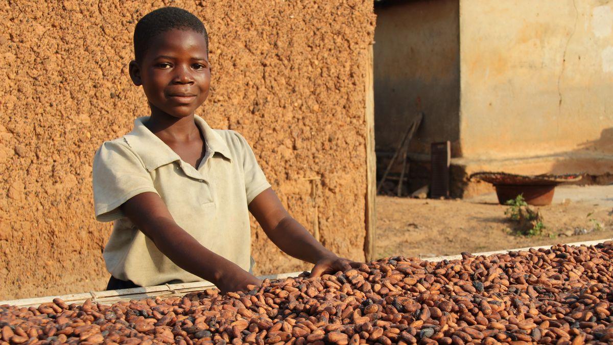 Ein Junge arbeitet in einer Kakao-Fabrik.