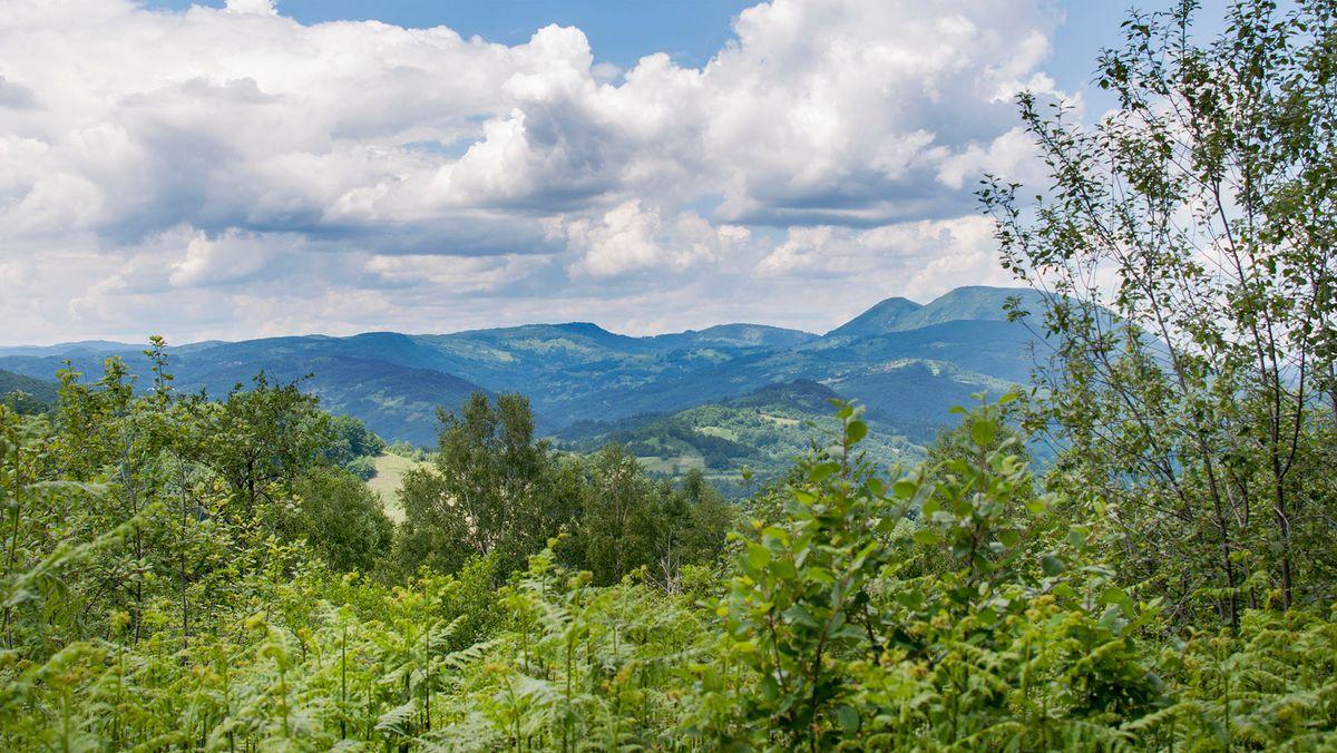 Wälder um Srebrenica