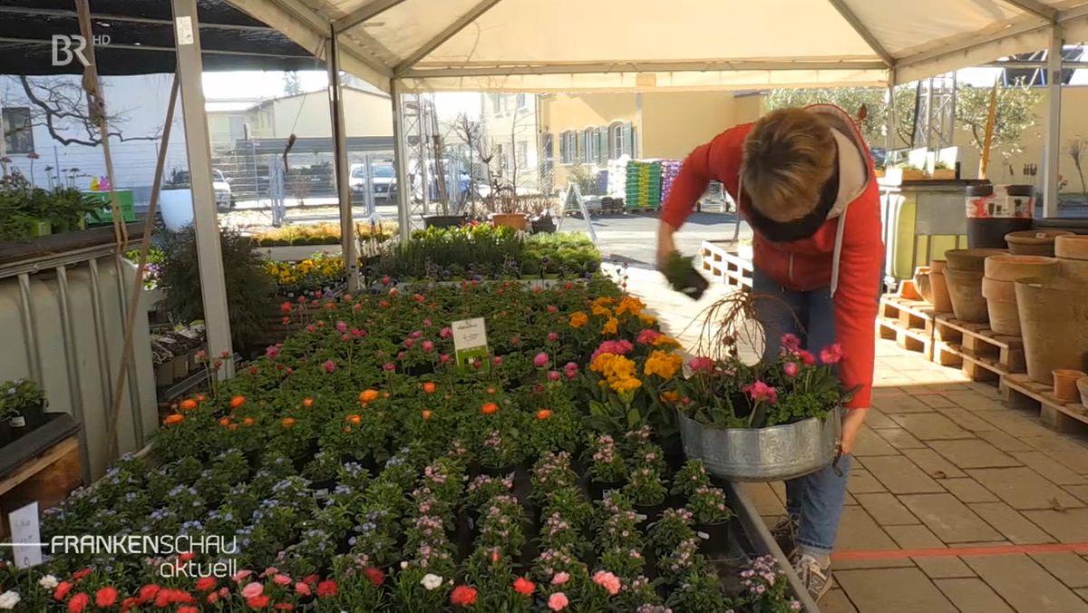 Die Mitarbeiterin einer Gärtnerei steht vor einem Beet mit vielen bunten Blumen.
