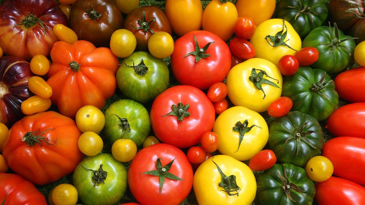 Tomaten und Gemüse in verschiedenen Farben. DLR und NASA starten einen neuen Testlauf in der Antarktis.