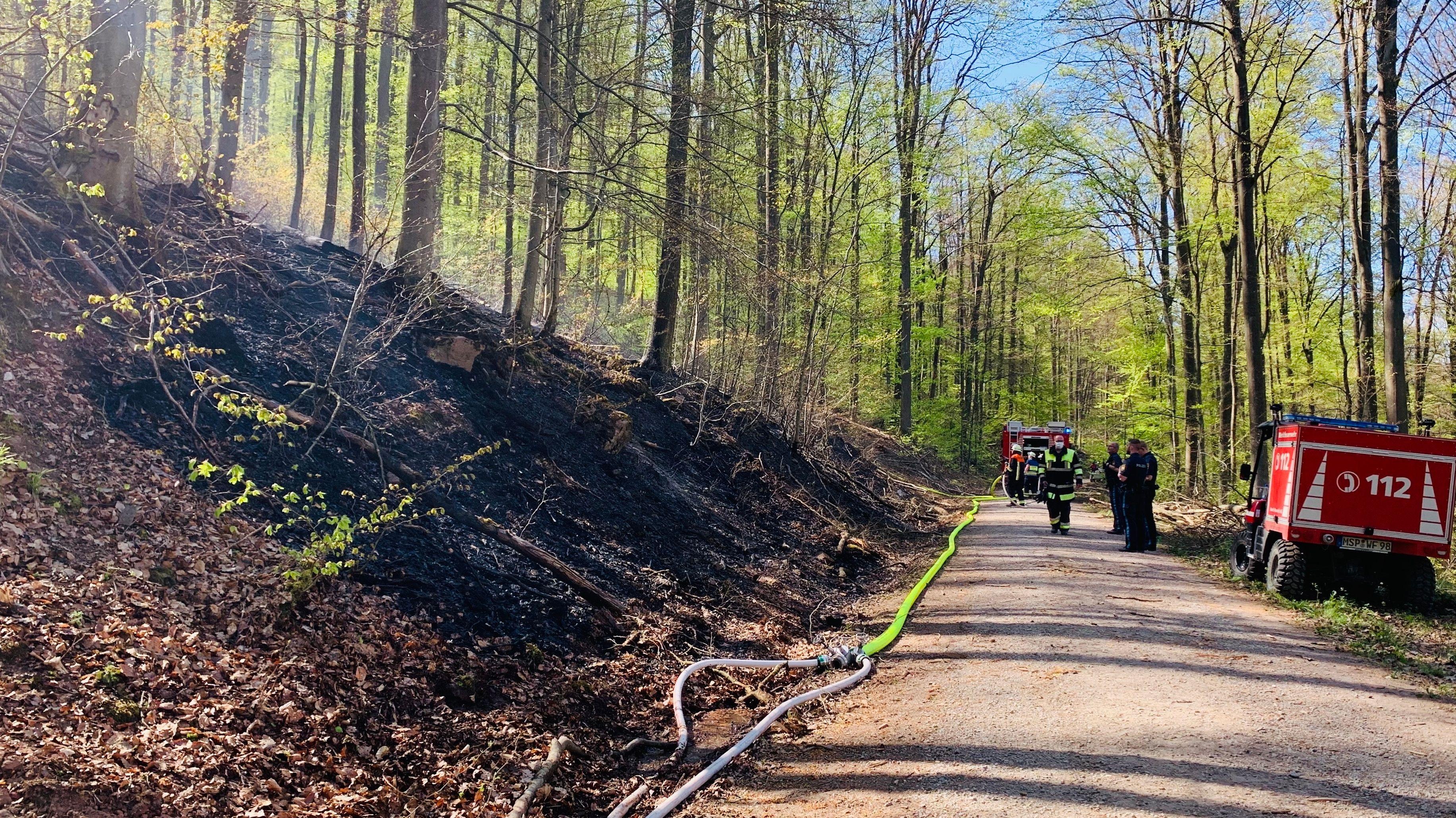 Feuer im Wald bei Lohr am Main