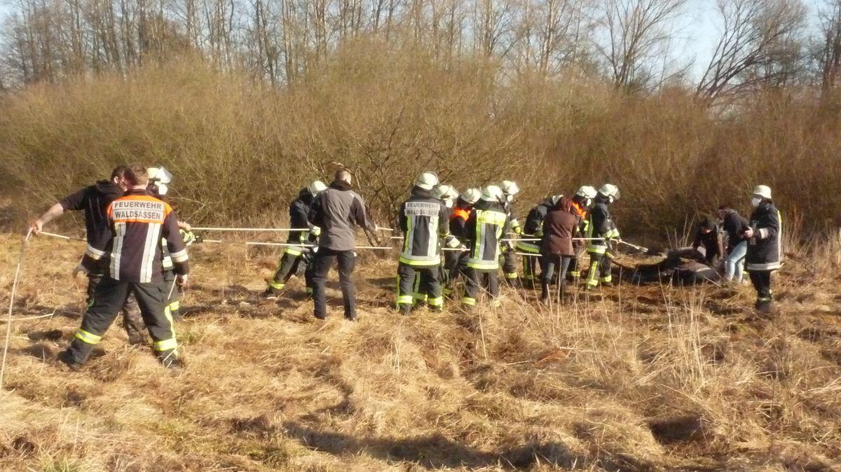 """Die Feuerwehrleute ziehen aus eigener Kraft """"Bolita"""" aus dem Sumpf."""