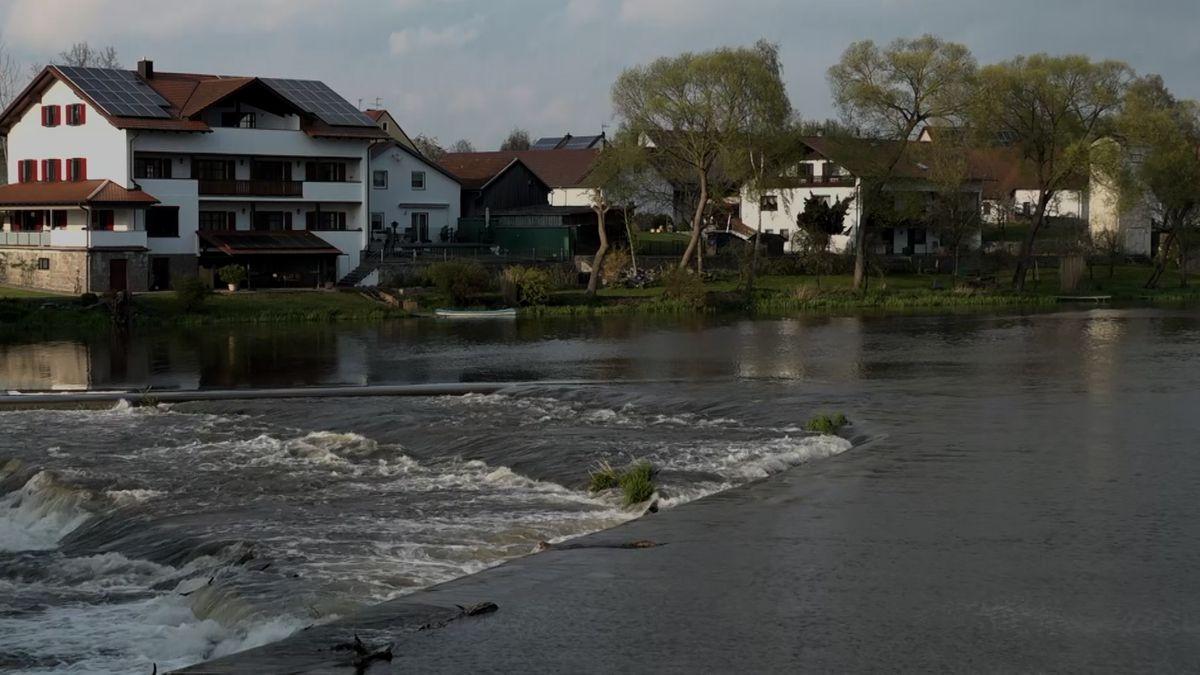 Fluss Regen bei Muckenbach