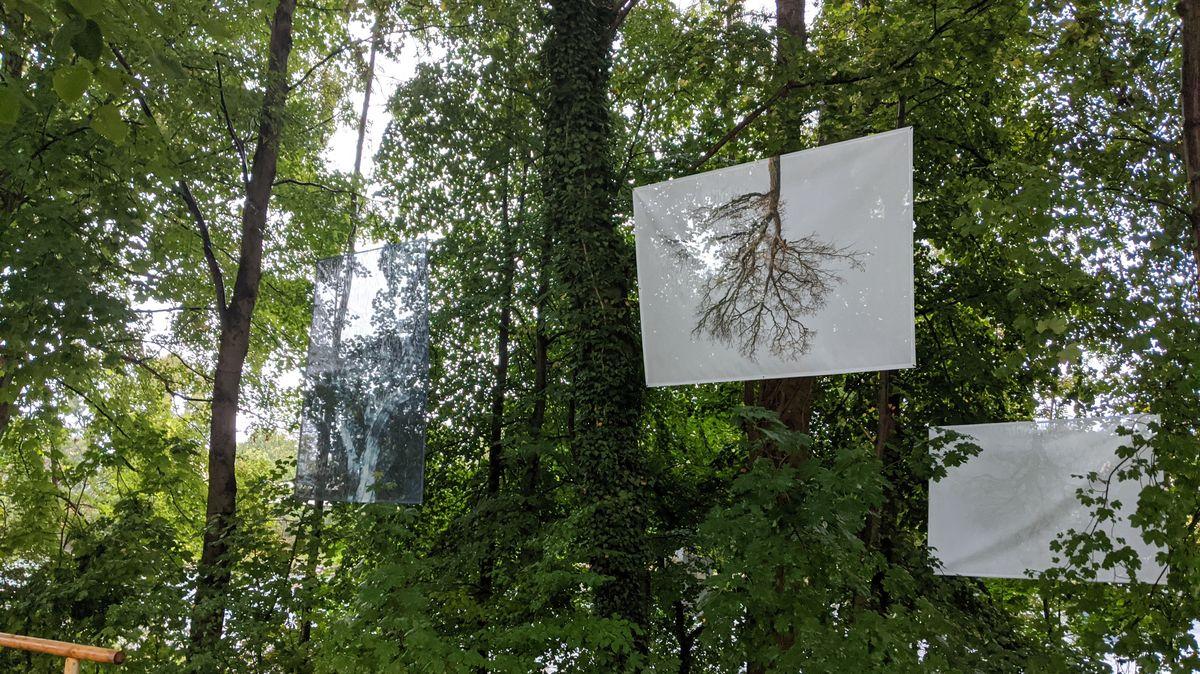 """Open-Air-Ausstellung """"Die Luft zum Atmen"""" in Landsberg am Lech"""