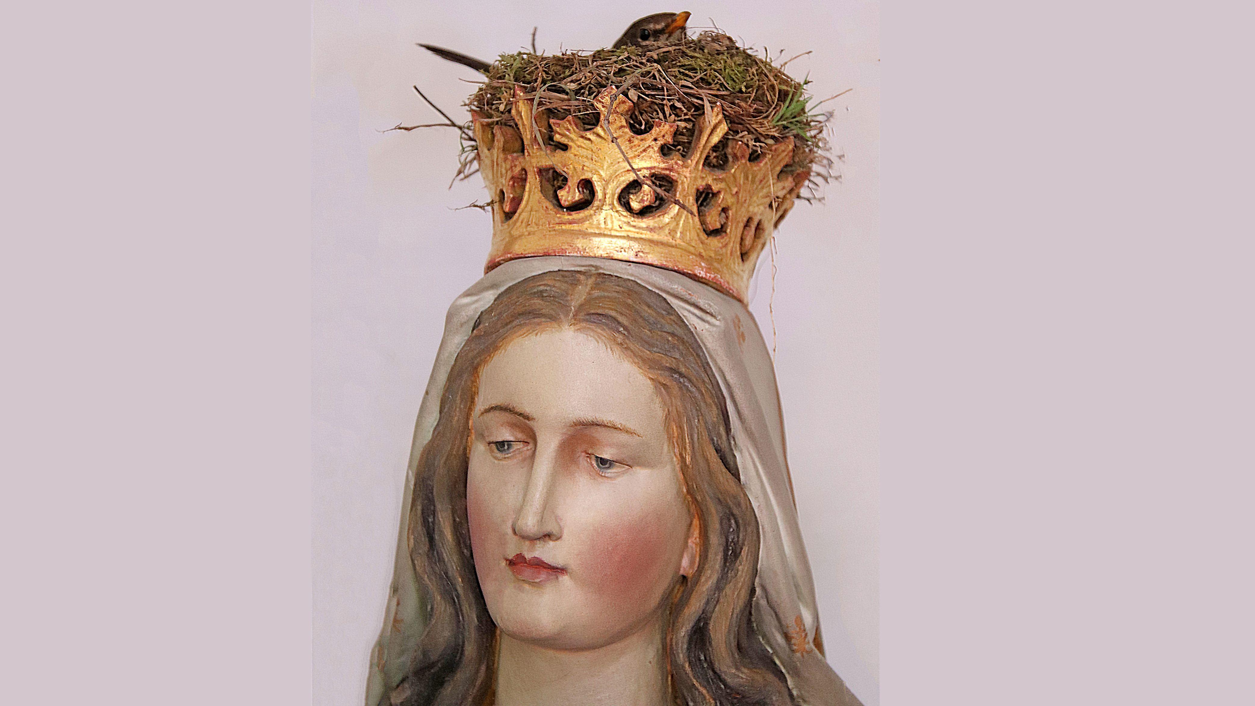 Nest in der Krone der Gottesmutter