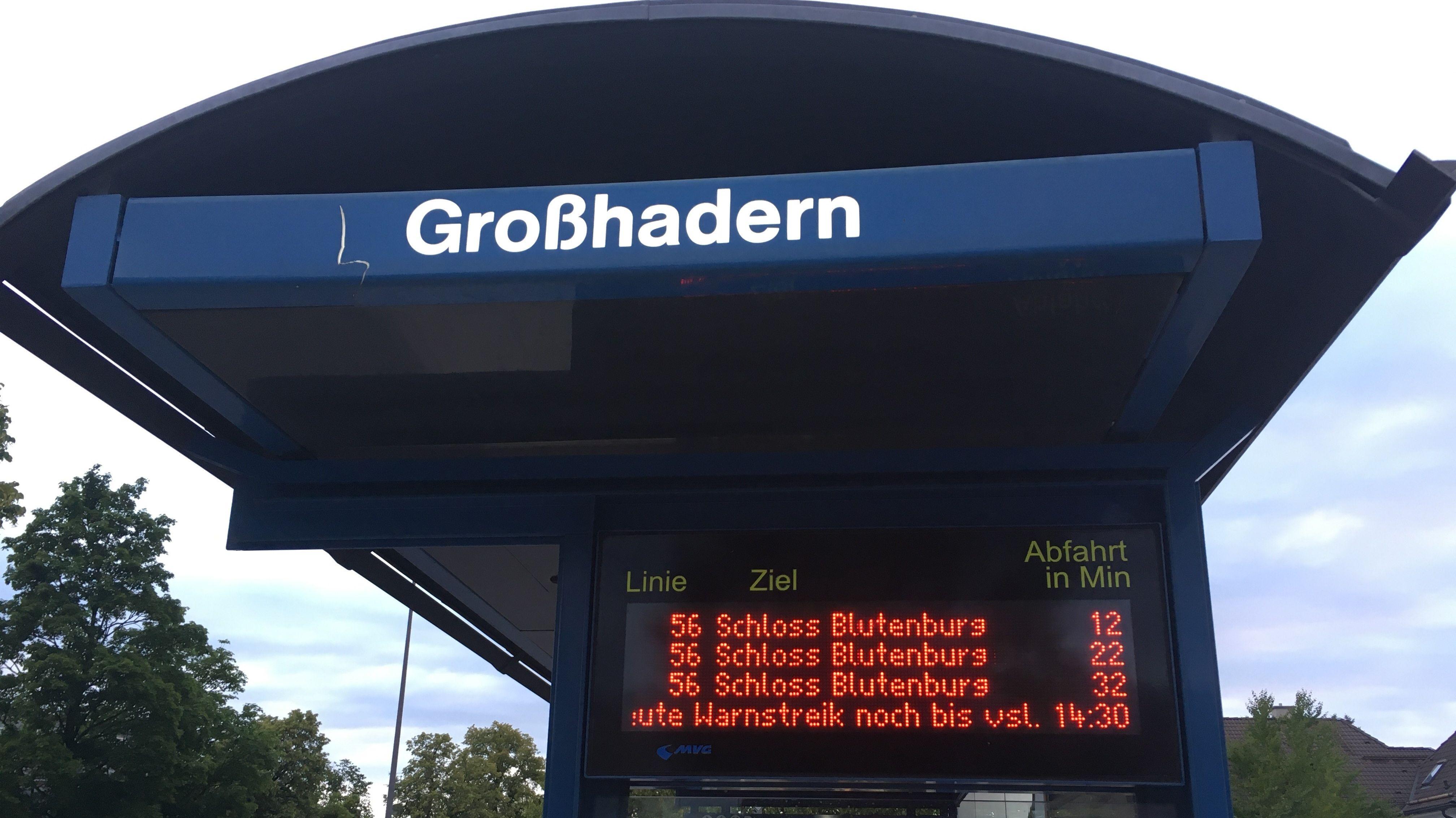 Bei den Bussen ist auf den meisten Linien mindestens jeder zweite im Einsatz