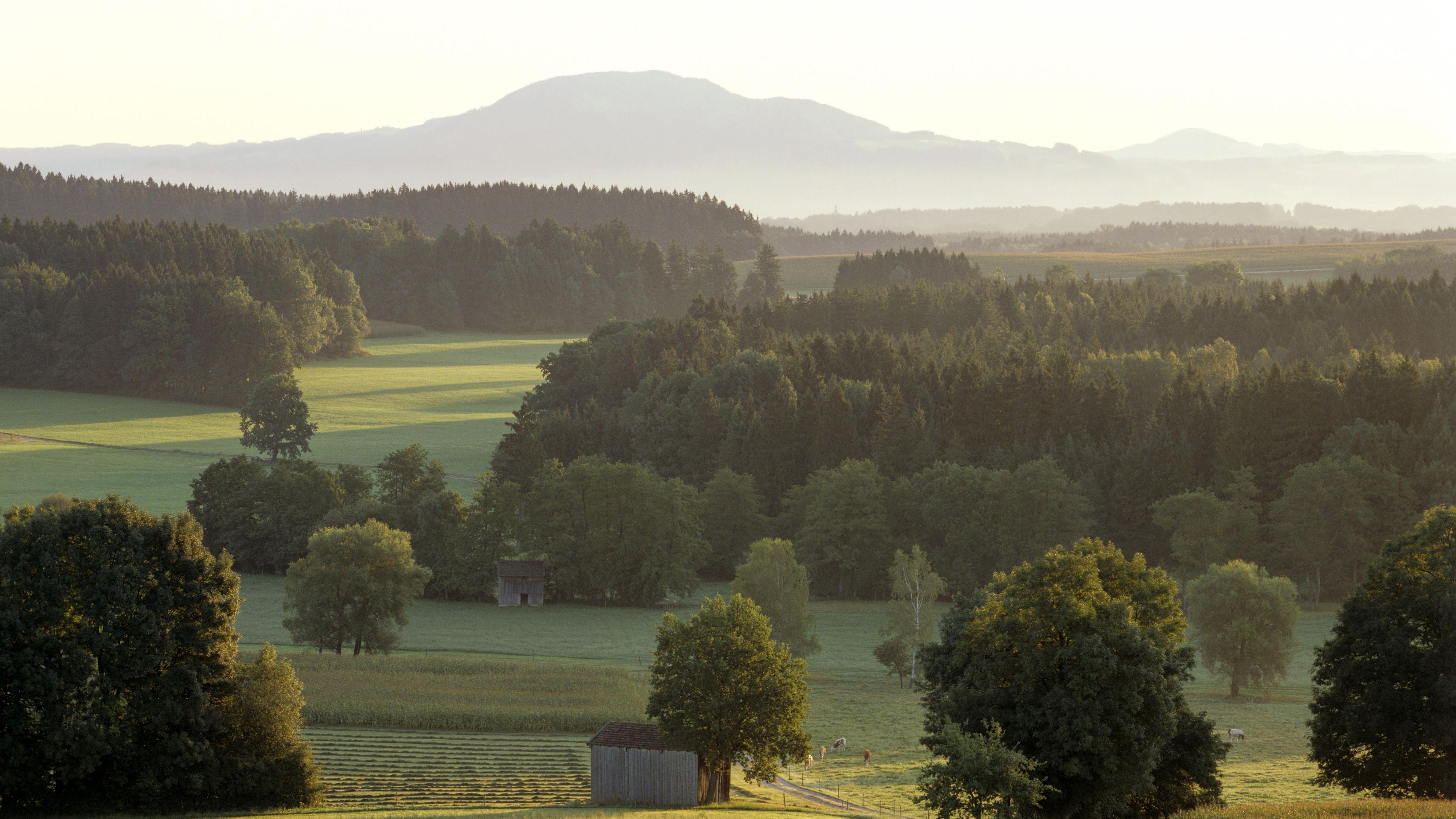 Haarmoos, Berchtesgadener Land