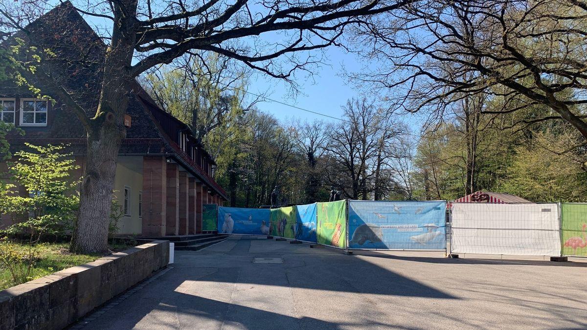Der Nürnberger Tiergarten bereitet sich auf die Eröffnung in Pandemiezeiten vor.