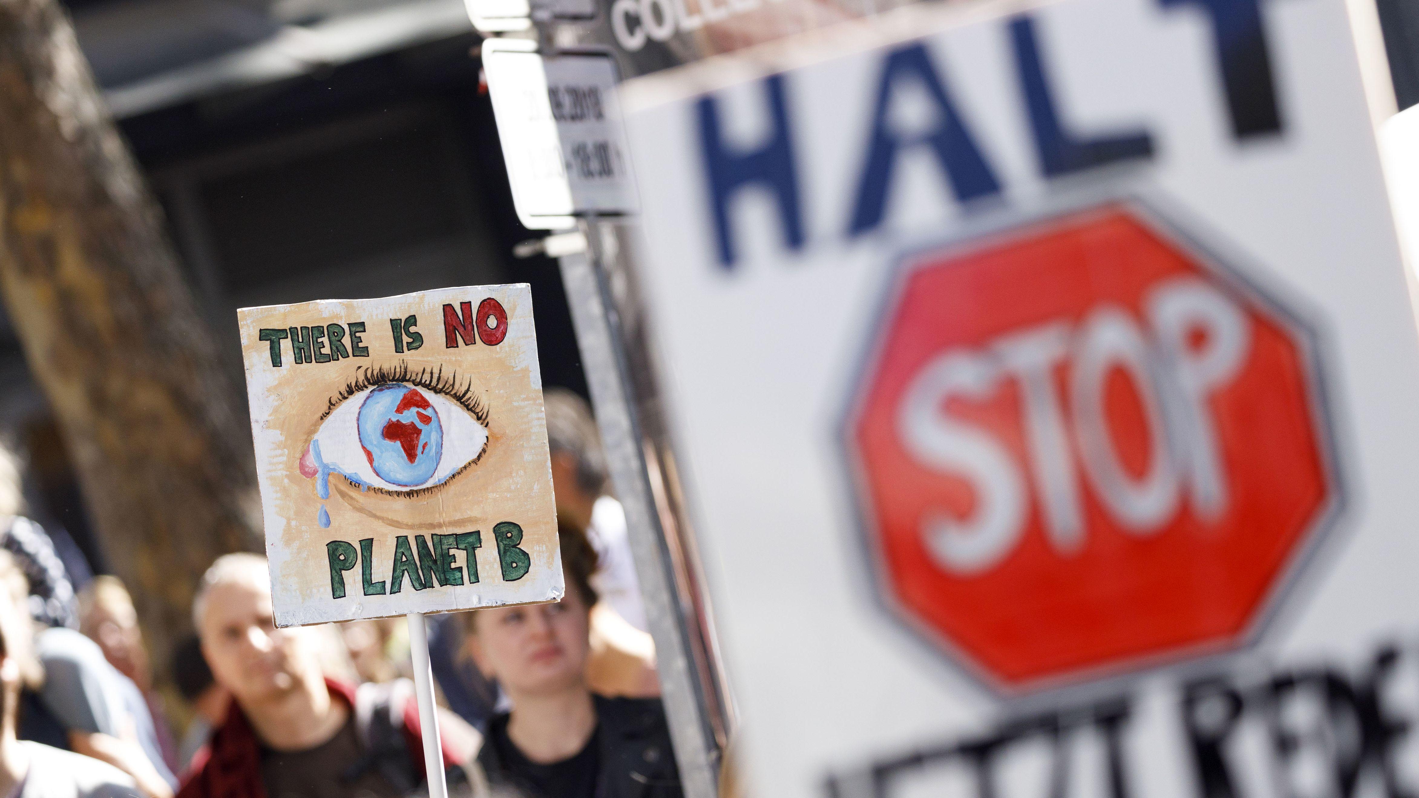 Demonstranten bei der 'Fridays for Future'-Demonstration im Rahmen des weltweiten Klimastreiks in Köln.