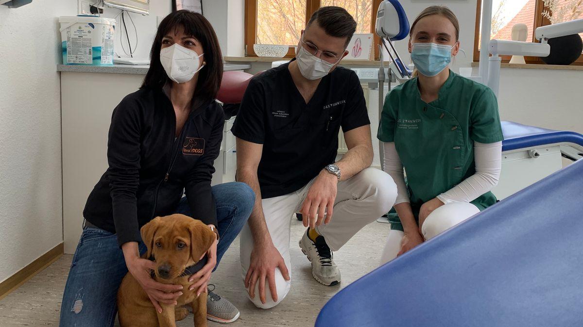Hundetrainerin Nicoletta Reina mit Hündin Lilly in der Zahnarztpraxis in Markt Berolzheim.