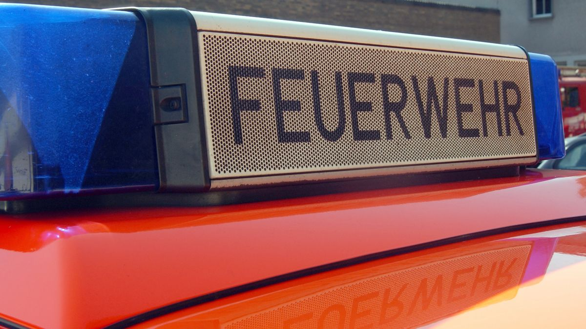 Feuerwehrschild auf Feuerwehrfahrzeug (Symbolbild)