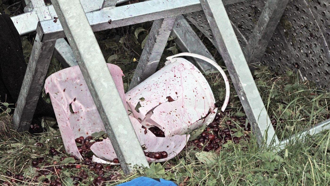 Zerstörter Eimer nach dem Unfall bei der Kirschernte