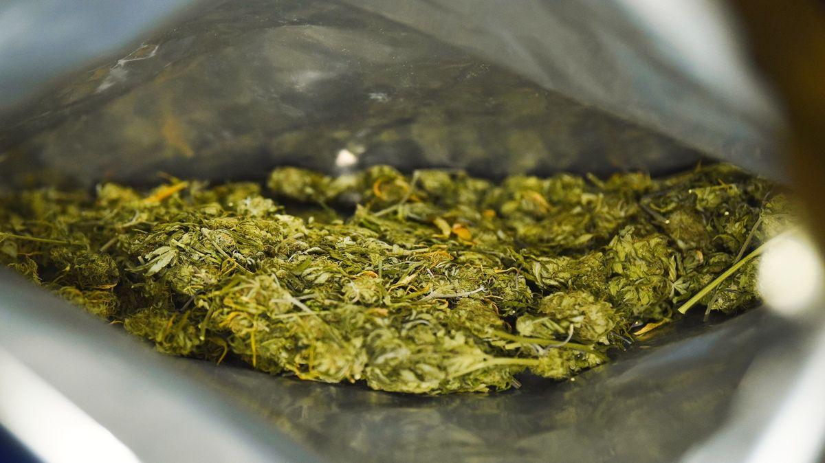 Marihuana (Symbolbild)