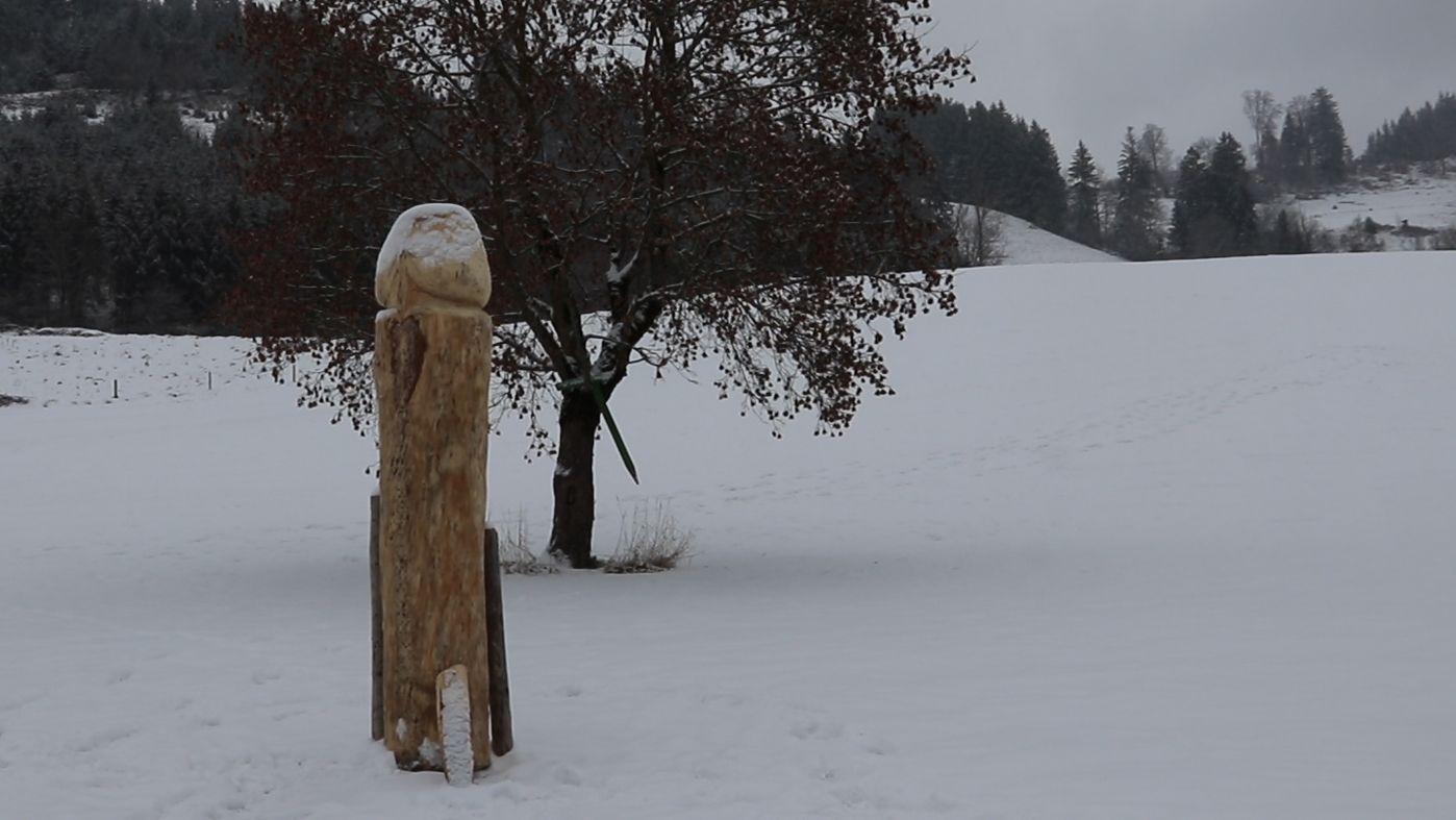 Ein großer Penis aus Holz steht auf einer Wiese