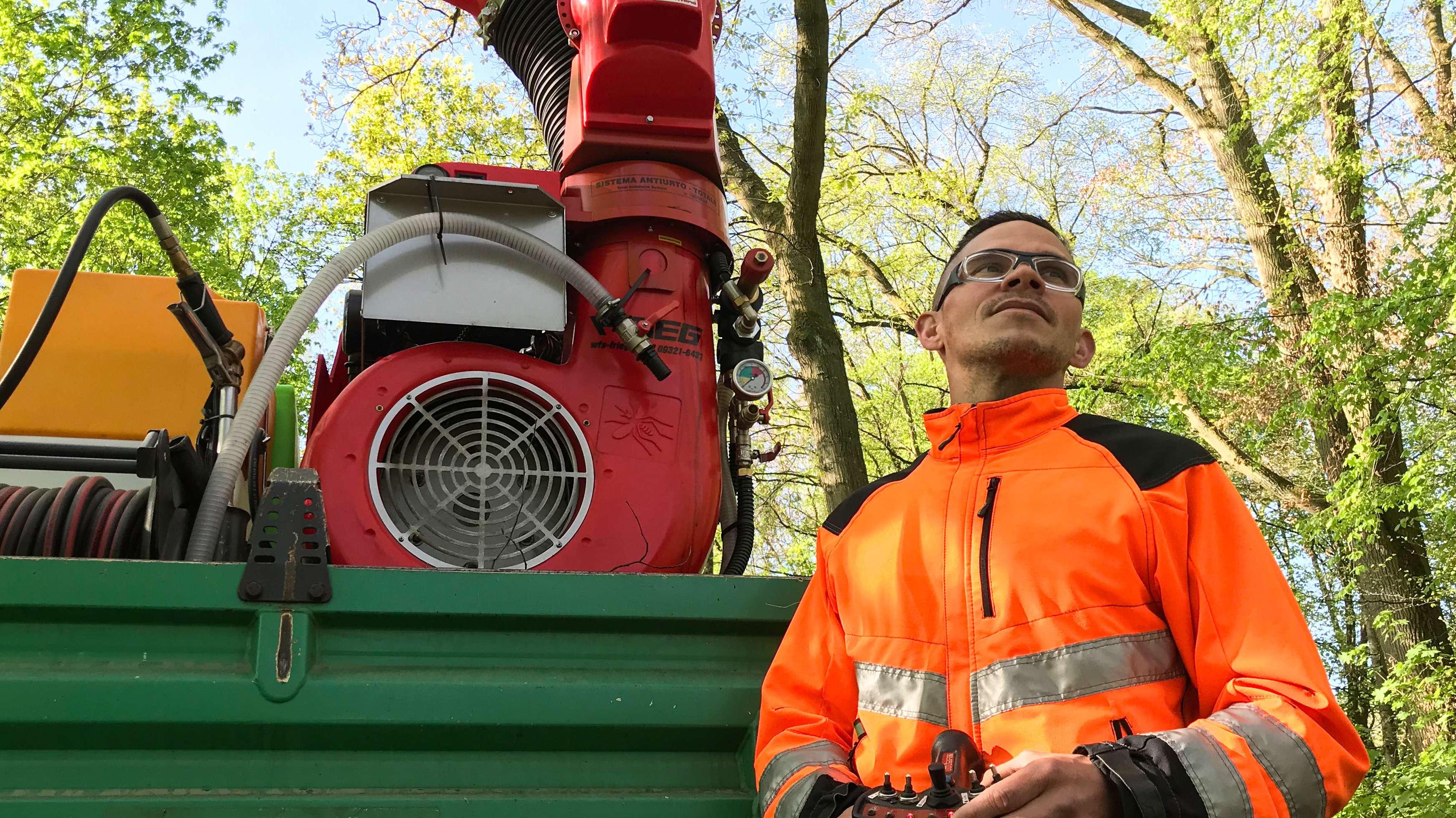 Mitarbeiter der Stadt Bamberg spritzt Eichenprozessionsspinner-Gift