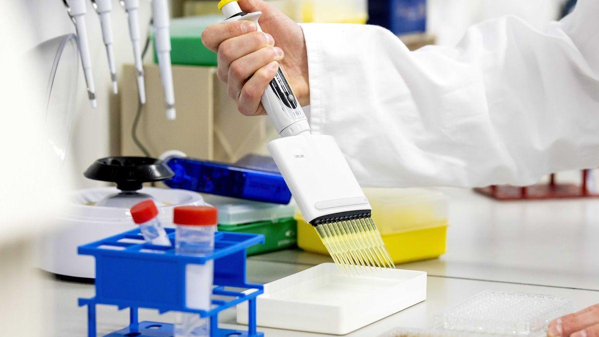 Hand eines Forschers füllt Proben in Schale