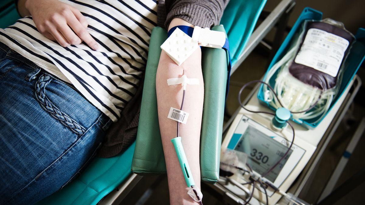 Blutspenden beim BRK (Symbolbild)