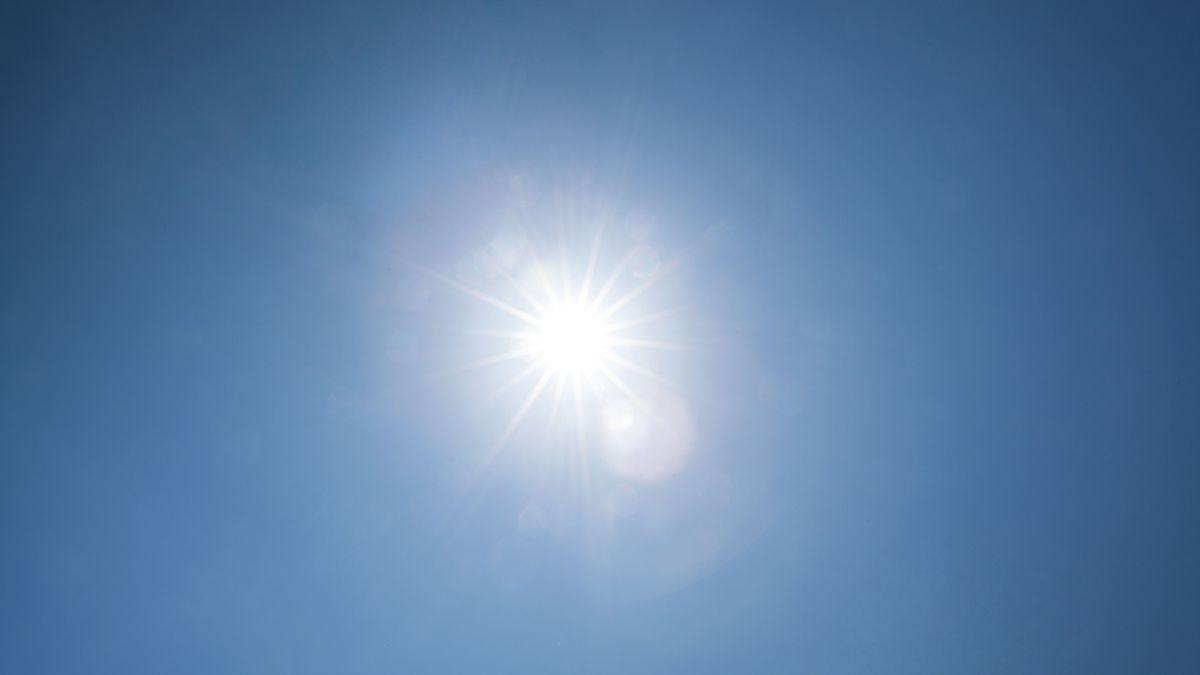 """Die Zeit vom 23. Juli bis zum 23. August wird im Volksmund als """"Hundstage"""" bezeichnet. Sie sollen angeblich die heißesten Tage im Jahr sein."""