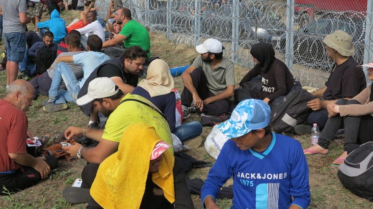 Flüchtlinge am ungarischen Grenzzaun 2015