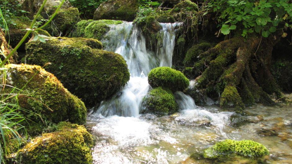Ein Bach mit einem kleinen Wasserfall (Symbolbild)