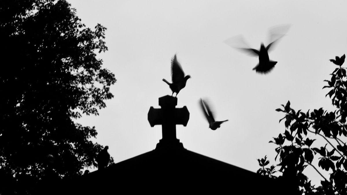 Schattenbild von einem Friedhof