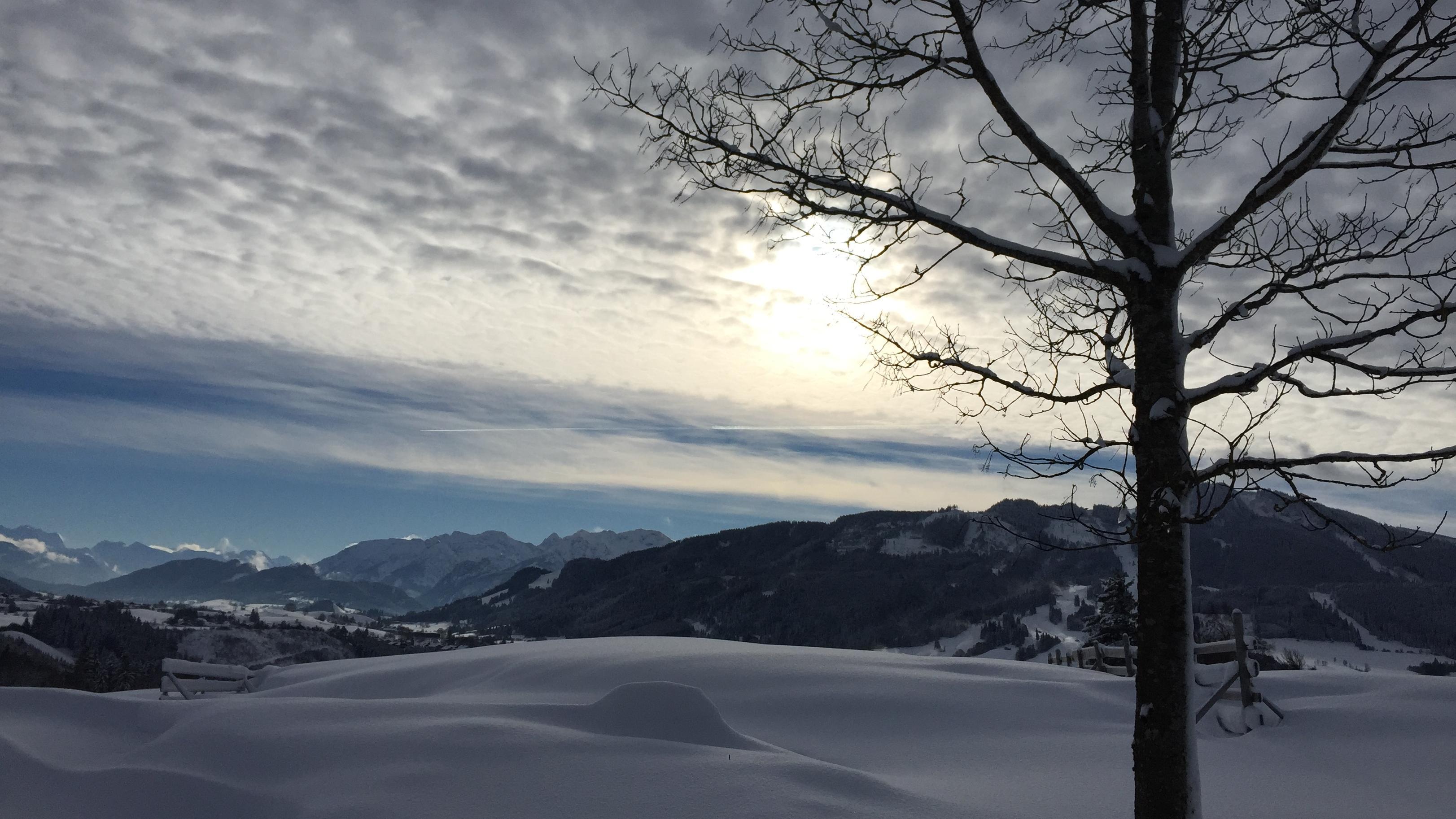 Blick von der Schnakenhöhe bei Maria Rain, Gemeinde Oy-Mittelberg (Lkr. Oberallgäu) Richtung Alpspitze und östliche Allgäuer Alpen