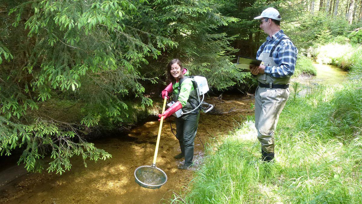 Watbefischung im Bayerischen Wald zur Erhebung des Fischbestandes, (von links: Eva Lummer, Dr. Stephan Paintner)