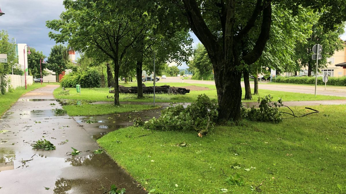 Auch über Bellenberg hat der Sturm gewütet