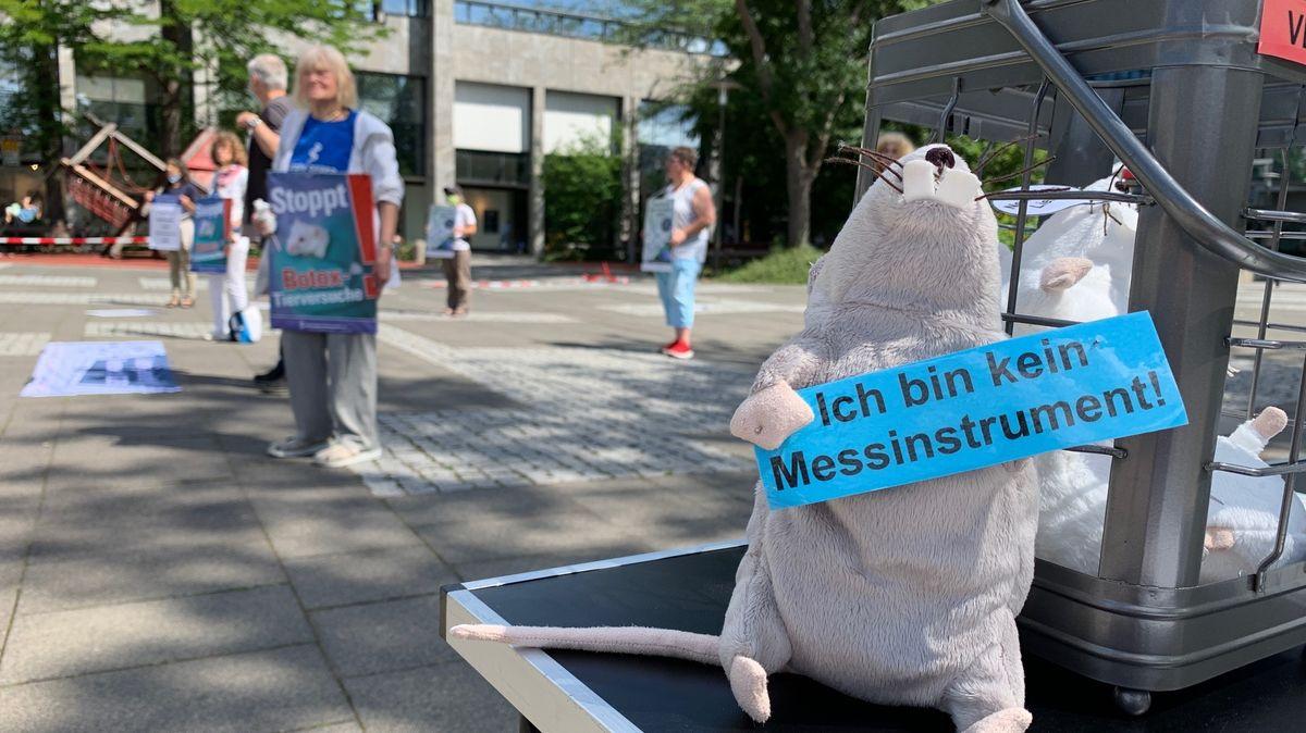 """Eine Plüsch-Maus hält ein Schild auf dem steht: """"Ich bin kein Messinstrument!"""""""