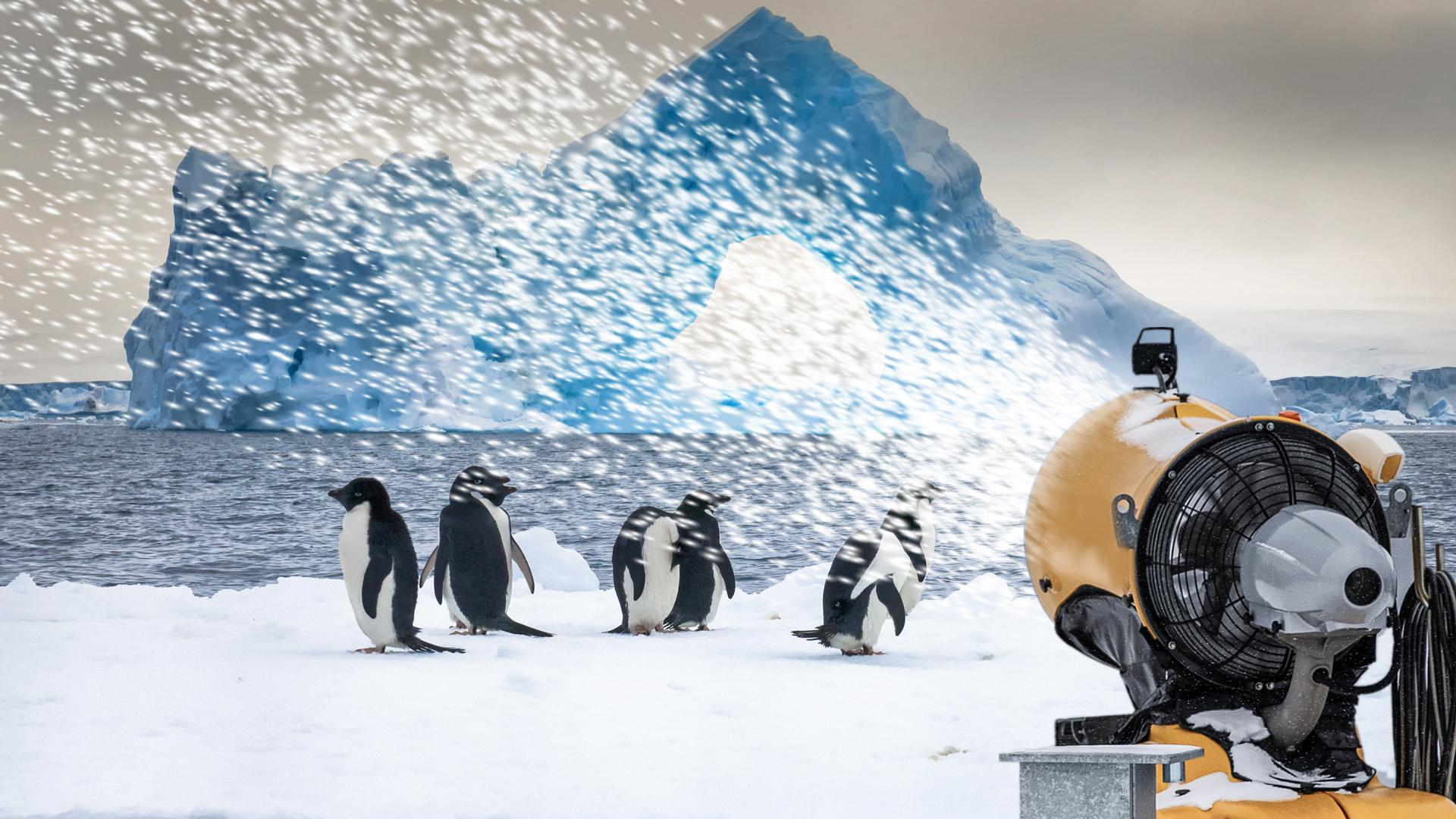 Szenario der Forscher: Schneekanonen für die Antarktis
