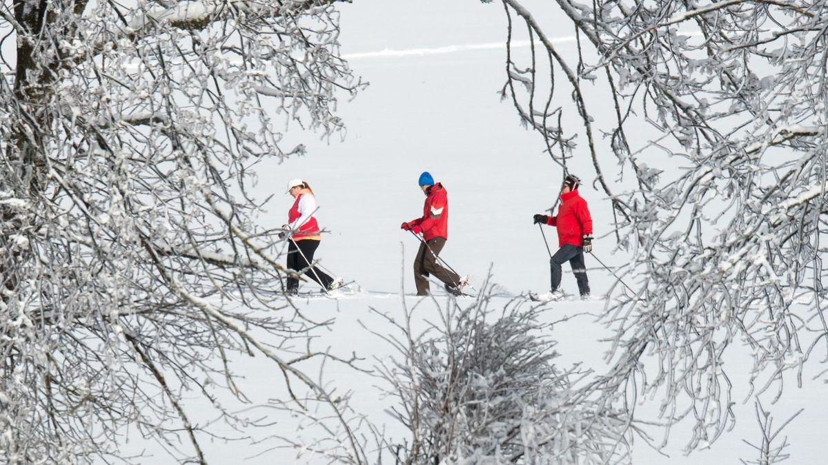 Schneeschuhwanderer nahe St. Englmar