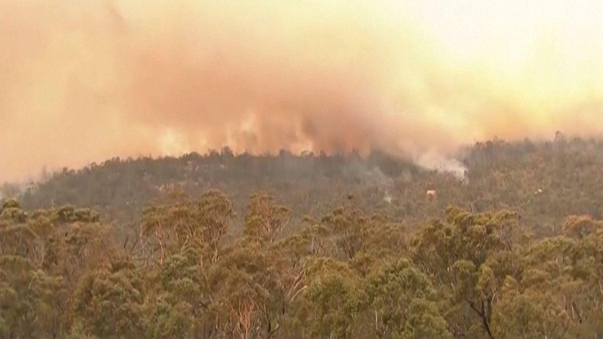 Australien: Canberra ruft wegen Bränden Notstand aus