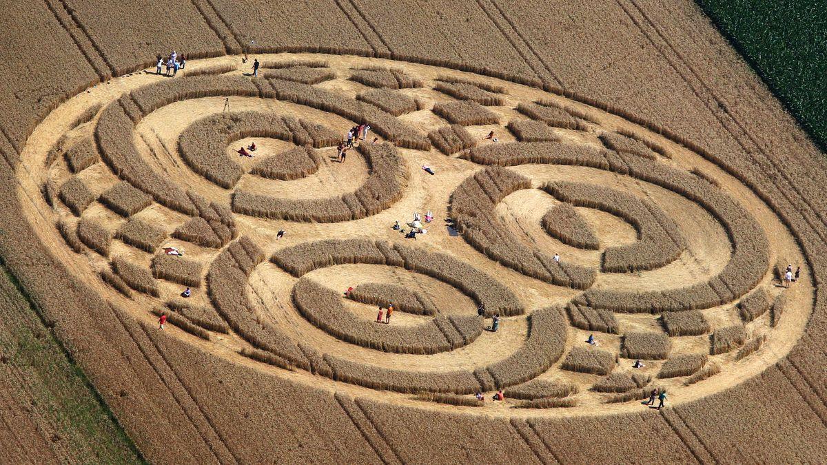 Interessierte durchstreifen am 28.07.2014 einen Kornkreis in einem Weizenfeld bei Raisting