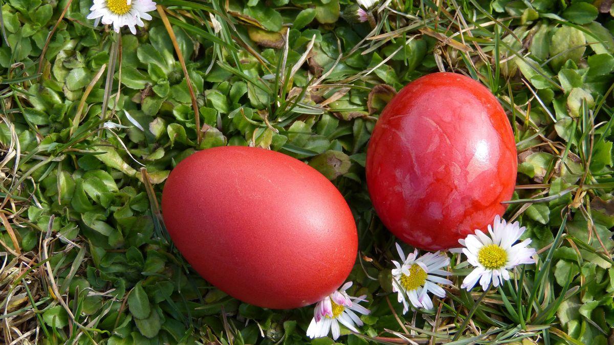 Osterei oder Giftköder? Vorsicht im Landkreis Landshut